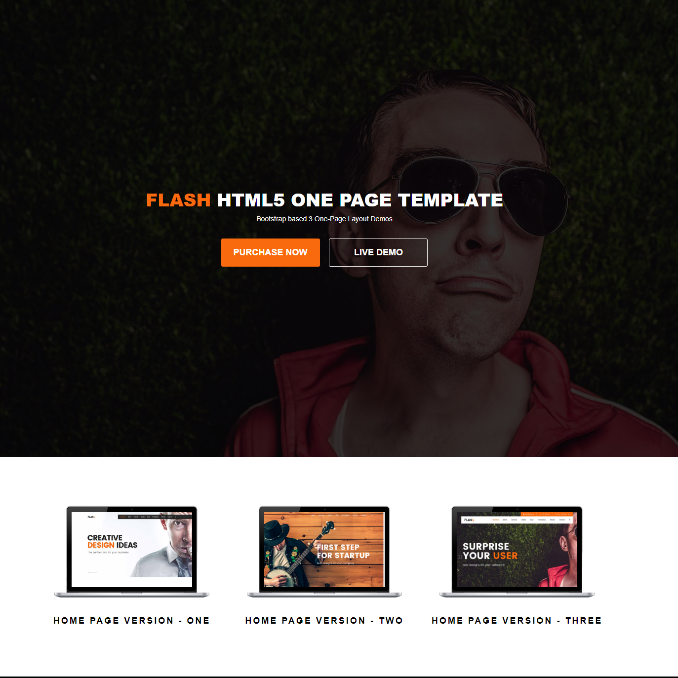 HTML Bootstrap Flash Themes