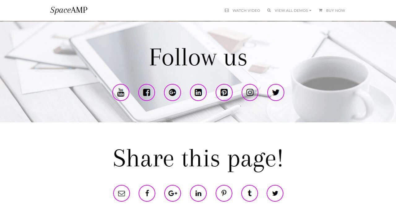 AMP Website Social Template
